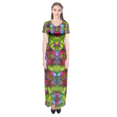 Freedom In Colors And Floral Short Sleeve Maxi Dress by pepitasart