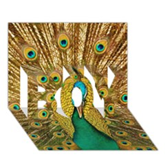Bird Peacock Feathers Boy 3d Greeting Card (7x5) by AnjaniArt