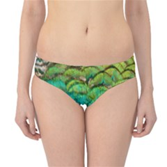 Blue Peacock Feathers Hipster Bikini Bottoms by AnjaniArt