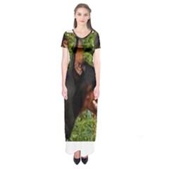 Doberman Pinscher Short Sleeve Maxi Dress by TailWags