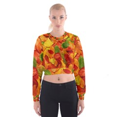 Colorful Fall Leaves Women s Cropped Sweatshirt by AnjaniArt