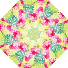 Tropical Dream Hibiscus Pattern Folding Umbrellas by DanaeStudio