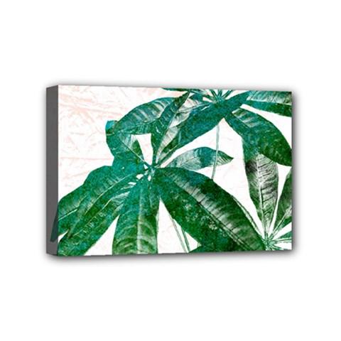 Pachira Leaves  Mini Canvas 6  X 4  by DanaeStudio