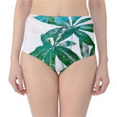 Pachira Leaves  High Waist Bikini Bottoms by DanaeStudio