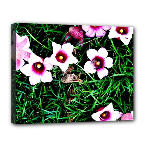 Pink Flowers Over A Green Grass Canvas 14  X 11  by DanaeStudio