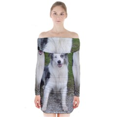 Blue Merle Border Collie Sitting Long Sleeve Off Shoulder Dress by TailWags
