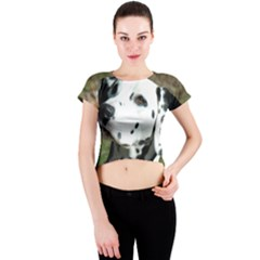 Dalmatian Crew Neck Crop Top by TailWags