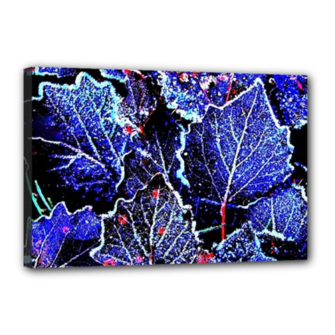 Blue Leaves In Morning Dew Canvas 18  X 12  by Costasonlineshop