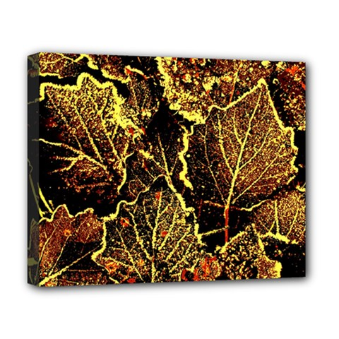 Leaves In Morning Dew,yellow Brown,red, Deluxe Canvas 20  X 16   by Costasonlineshop