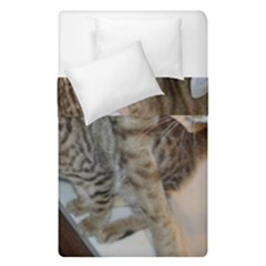 Ocicat Tawny Kitten With Cinnamon Mother  Duvet Cover Double Side (Single Size) by TailWags