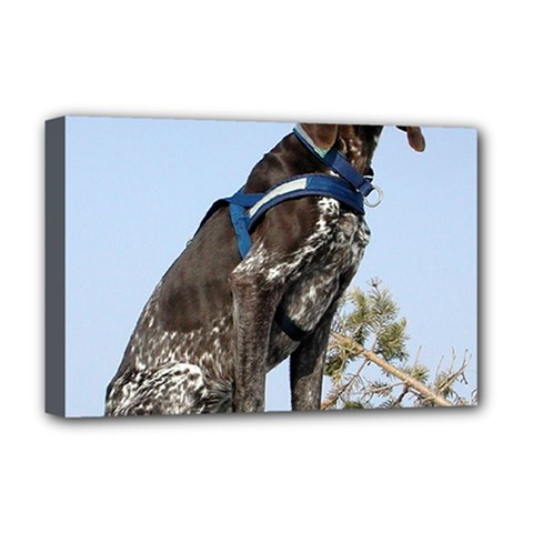 German Shorthair Pointer Sitting Deluxe Canvas 18  x 12   by TailWags
