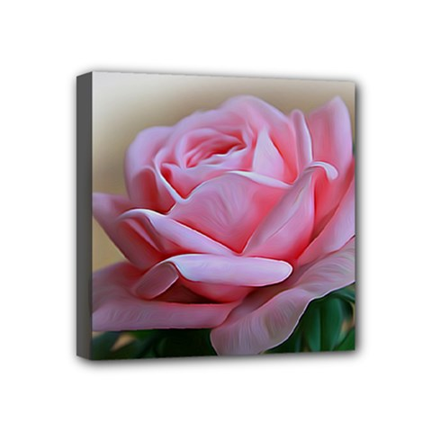Rose Pink Flowers Pink Saturday Mini Canvas 4  X 4