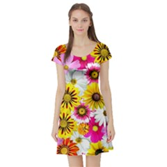 Flowers Blossom Bloom Nature Plant Short Sleeve Skater Dress by Amaryn4rt