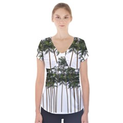 Bamboo Plant Wellness Digital Art Short Sleeve Front Detail Top by Amaryn4rt