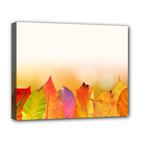Autumn Leaves Colorful Fall Foliage Deluxe Canvas 20  X 16   by Amaryn4rt