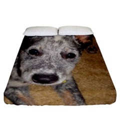 Australian Cattle Dog Blue Puppy Fitted Sheet (California King Size)