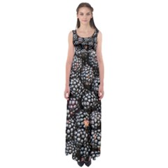 Blackberries Background Black Dark Empire Waist Maxi Dress