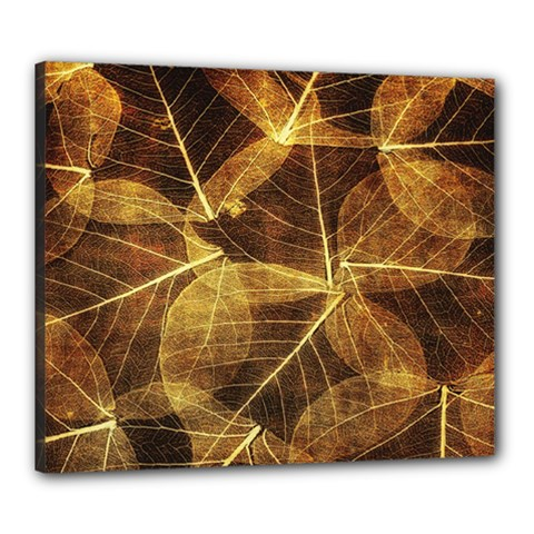 Leaves Autumn Texture Brown Canvas 24  X 20  by Amaryn4rt