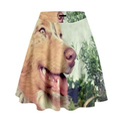 Australian Shepherd Red Merle High Waist Skirt by TailWags
