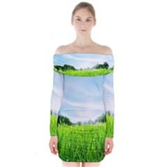 Green Landscape Green Grass Close Up Blue Sky And White Clouds Long Sleeve Off Shoulder Dress by Onesevenart