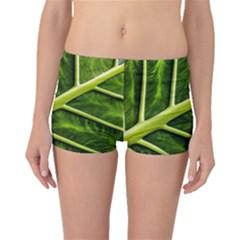 Leaf Dark Green Boyleg Bikini Bottoms by Onesevenart