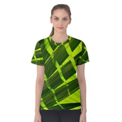 Frond Leaves Tropical Nature Plant Women s Cotton Tee by Amaryn4rt