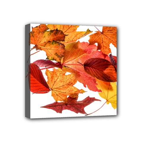 Autumn Leaves Leaf Transparent Mini Canvas 4  X 4  by Amaryn4rt