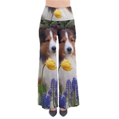 Shetland Sheepdog In Flowers Pants