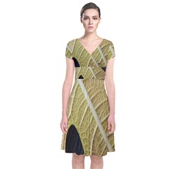 Yellow Leaf Fig Tree Texture Short Sleeve Front Wrap Dress