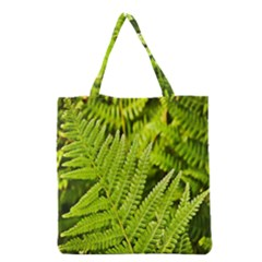 Fern Nature Green Plant Grocery Tote Bag by Nexatart