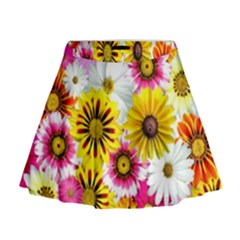 Flowers Blossom Bloom Nature Plant Mini Flare Skirt by Nexatart