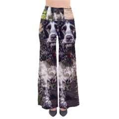 Black Roan English Cocker Spaniel Pants