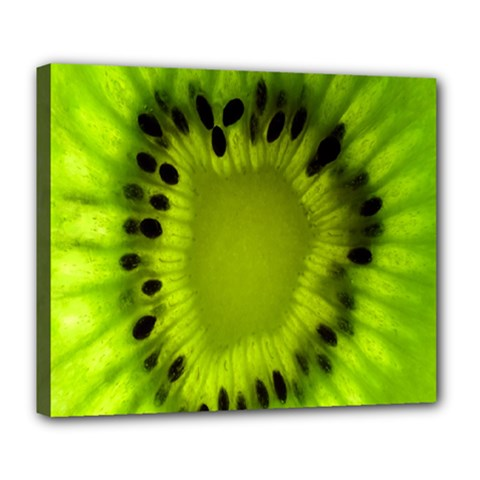 Kiwi Fruit Slices Cut Macro Green Deluxe Canvas 24  X 20   by Alisyart