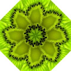 Kiwi Fruit Slices Cut Macro Green Golf Umbrellas by Alisyart