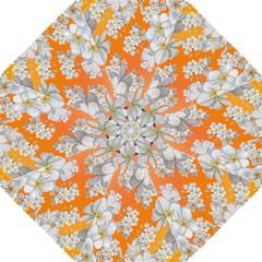 Flowers Background Backdrop Floral Hook Handle Umbrellas (large) by Nexatart