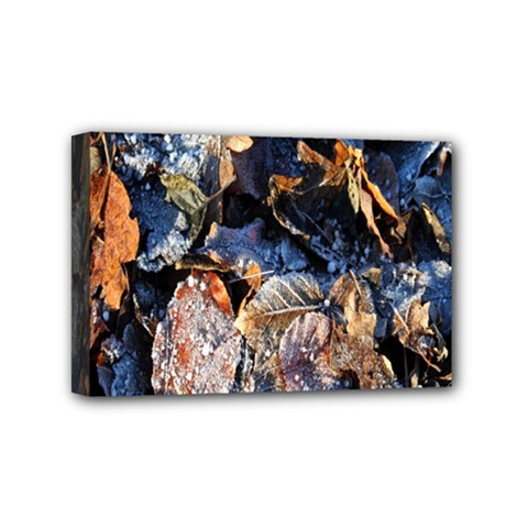 Frost Leaves Winter Park Morning Mini Canvas 6  X 4  by Nexatart