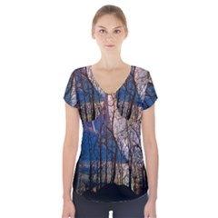 Full Moon Forest Night Darkness Short Sleeve Front Detail Top by Nexatart