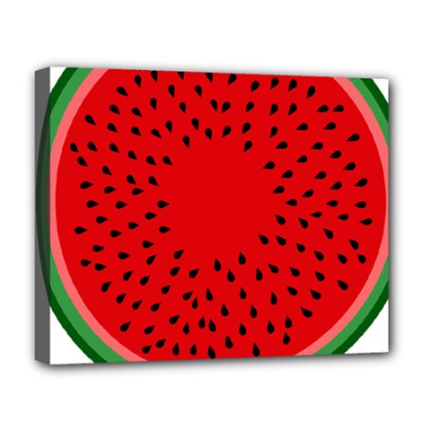 Watermelon Deluxe Canvas 20  X 16   by Valentinaart
