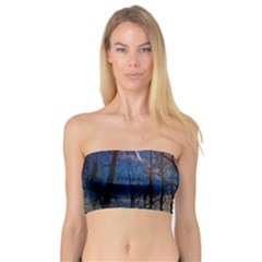 Full Moon Forest Night Darkness Bandeau Top by Nexatart