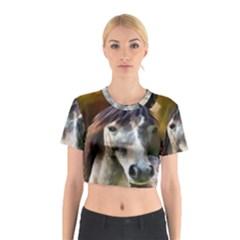 Horse Horse Portrait Animal Cotton Crop Top
