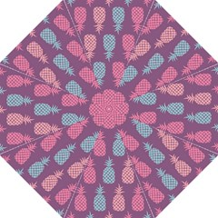 Pineapple Pattern  Straight Umbrellas by Nexatart