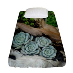 Plant Succulent Plants Flower Wood Fitted Sheet (single Size) by Nexatart