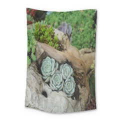 Plant Succulent Plants Flower Wood Small Tapestry by Nexatart