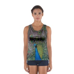 Peacock Feather Beat Rad Blue Women s Sport Tank Top