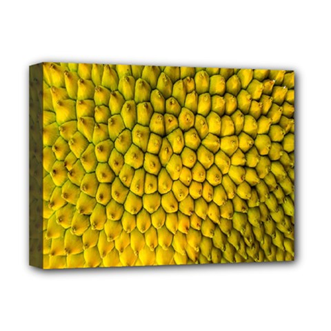 Jack Shell Jack Fruit Close Deluxe Canvas 16  X 12