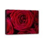 Roses Flowers Red Forest Bloom Mini Canvas 7  x 5