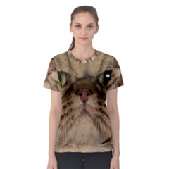 Cute Persian Cat Face In Closeup Women s Sport Mesh Tee by Amaryn4rt