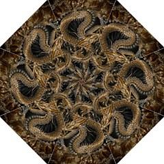Dragon Pentagram Folding Umbrellas by Amaryn4rt