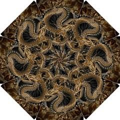 Dragon Pentagram Golf Umbrellas by Amaryn4rt