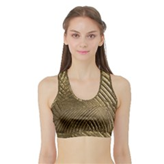 Brushed Gold Sports Bra With Border by Onesevenart